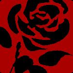 Labour Party Rose